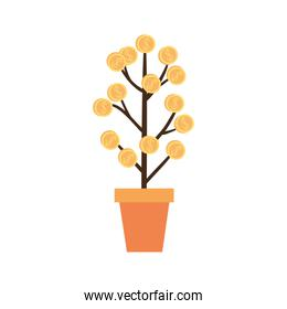 money tree, financial growth concept, money growth