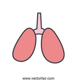 Lungs flat style icon vector design