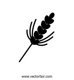 ears of wheat icon, silhouette style