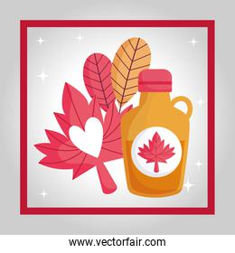 Canadian maple syrup and leaf vector design