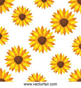 background of sunflowers plants icons