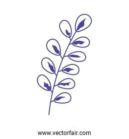 branch leaves foliage nature linear icon design