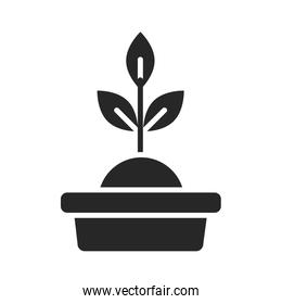 donation charity volunteer help social potted plant silhouette style icon