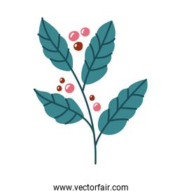 coffee plant with seeds free form style icon