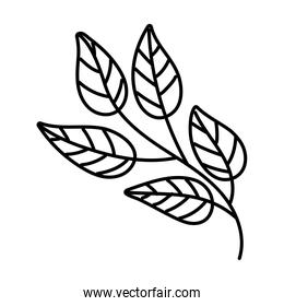 leaf plant nature line style icon