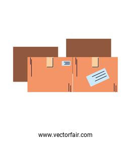 Cardboard boxes to deliver to different destinations with safety standards