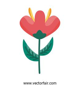 flower detail style icon vector design