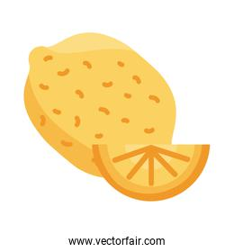 lemon and half detail style icon vector design