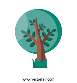 Tree detail style icon vector design