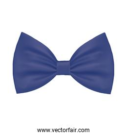 Isolated male blue bowtie vector design