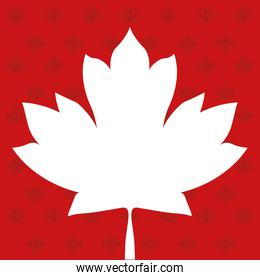 Canadian maple leaf of happy canada day vector design