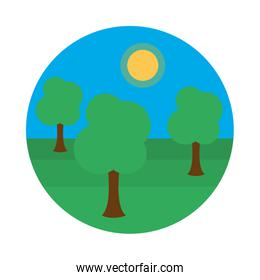Sunny landscape with trees icon, flat style