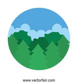 Pines trees, forest landscape icon, flat style