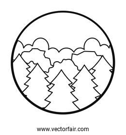 Pines trees, forest landscape icon, line style