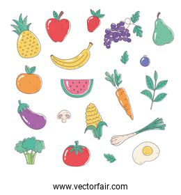 healthy food nutrition organic fruits vegetables tomato apple pineapple carrot onion egg eggplant broccoli