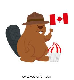 Canadian beaver with hat and flag of happy canada day vector design