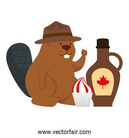 Canadian beaver with maple syrup of happy canada day vector design