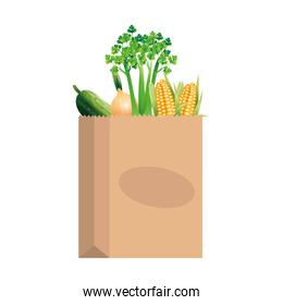 Vegetables inside bag vector design