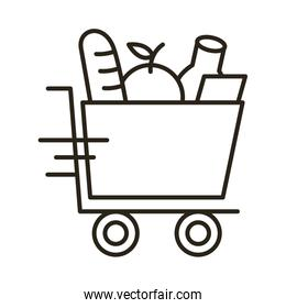 groceries in shopping cart delivery service line style