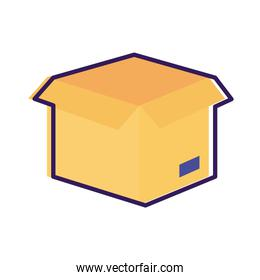 box carton packing delivery service line and fill style