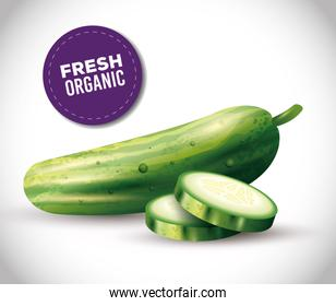 cucumber whole and sliced, healthy food, fresh vegetable organic