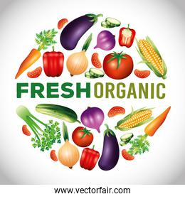 fresh organic vegetables, healthy food, healthy lifestyle or diet