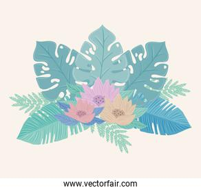 flowers color pastel with leaves , nature concept