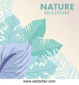 background, tropical nature leaves with pastel color