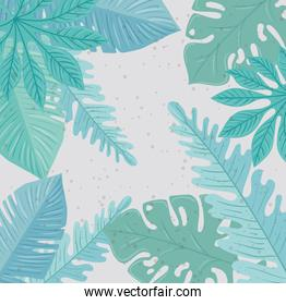 background, tropical nature leafs with pastel color