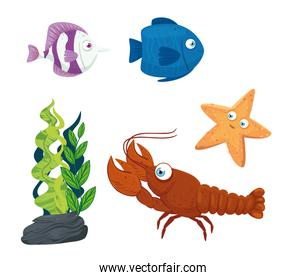 set fishes, with lobster and starfish, seaworld dwellers, cute underwater creatures, habitat marine