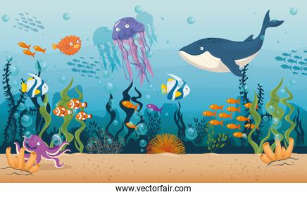 blue whale with fishes and wild marine animals in ocean, sea world dwellers, cute underwater creatures,habitat marine concept
