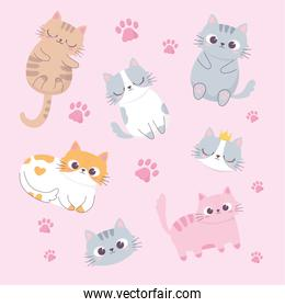 cute cats adorable faces paws cartoon animal funny character background