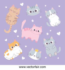 cute cats love hearts heads cartoon animal funny character background