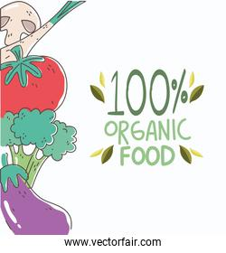 fresh tomato broccoli and eggplant organic healthy food with fruits and vegetables