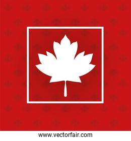 canada day celebration card with maaple leaf and leafs pattern