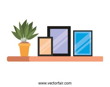 Isolated home frames and plant inside pot on shelf vector design