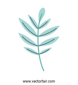 leaves foliage branch decoration isolated design icon