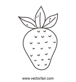 strawberry fruit organic fresh nutrition healthy food isolated icon design line design icon