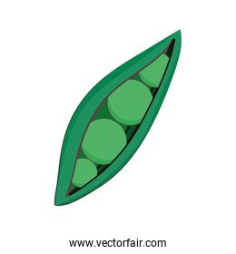 peas vegetable fresh nutrition healthy food isolated icon design