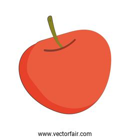 apple fruit fresh nutrition healthy food isolated icon design