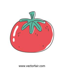 tomato organic vegetable fresh nutrition healthy food isolated icon design
