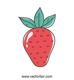 strawberry fruit organic fresh nutrition healthy food isolated icon design