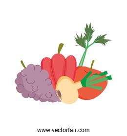grapes onion pepper apple fresh nutrition healthy food isolated icon design