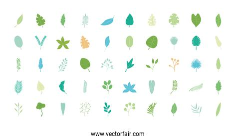 tropical leaves icon set, flat style