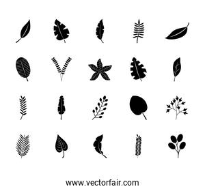 palm leaf and tropical leaves icon set, silhouette style