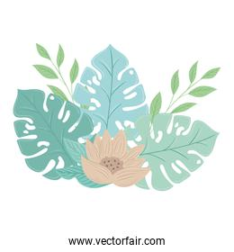 flowers color pastel with branches and leaves , nature concept