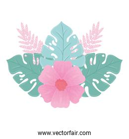 flower pink color pastel with branch and leaves , nature concept