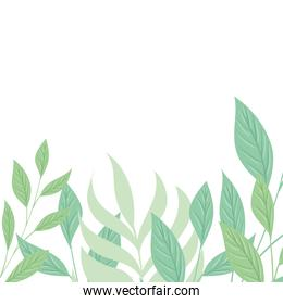 decoration of tropical branches and leaves pastel color on white background