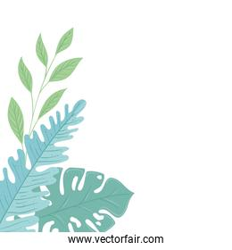 tropical branches with leaves pastel color on white background