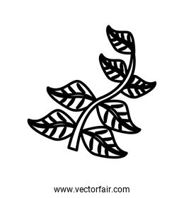 branch with leafs line style icon